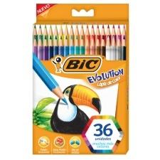 Bic 93 Lápices Evolution Coloring x 36